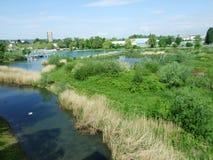 Das Sumpf-und See-Teil des Seeburgpark-Parks in Kreuzlingen lizenzfreies stockfoto