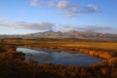 Das Sumpfgebiet des Herbstes lizenzfreie stockfotografie