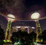 Das supertree Grove an den Gärten durch die Bucht, Singapur lizenzfreies stockbild