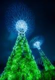 Das Supertree in Singapur Stockbilder