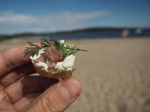 Das Surströmming diente mit Kartoffel-, Creme- und Dillgriff in der Hand lizenzfreies stockfoto