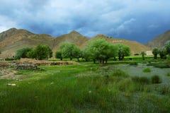 Das swampland von Tibet Stockbild