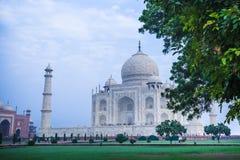 Das Taj Mahal in Agra, Indien lizenzfreie stockfotos