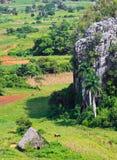 Das Tal von Vinales in Kuba stockfoto
