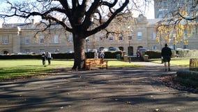 Das tasmanische Parlament bringen unter Lizenzfreie Stockfotografie