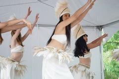 Das Teil 2 8 2015 NYC DanceFest Lizenzfreie Stockfotos