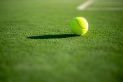 Das Tennisspiel Tennisball mit vielem Gras in der Nähe lizenzfreie stockbilder