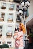 Das Thema ist die Freundschaft des Mannes und des Tieres Kaukasische Frau des schönen jungen roten Haares, die eine Schoßhund Chi stockfotos