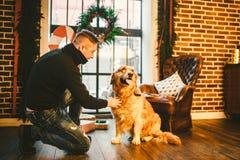 Das Thema ist die Freundschaft des Mannes und des Tieres Kaukasischer junger Mannes- und Schoßhundzucht Labrador-golden retriever stockfotos