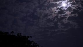 Das timelapse von sich schnell bewegenden Wolken stock video footage