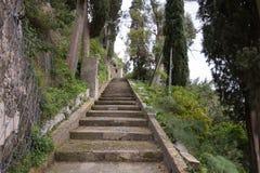 Das Treppenhaus im Wald stockbild