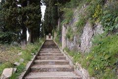 Das Treppenhaus im Wald stockbilder