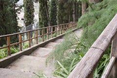Das Treppenhaus im Wald stockfotografie