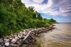 Das Ufer Chesapeake Bays an den Abstiegen parken, in Pasadena, Mary stockbild