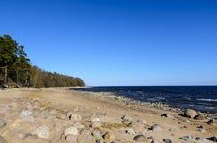 Das Ufer des Finnischen Meerbusens, das blaue Meer mit Wellen stockbild