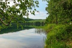 Das Ufer des Sees lizenzfreie stockfotografie