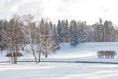 Das Ufer von einem gefrorenen Fluss an einem kalten Wintertag stockfotos