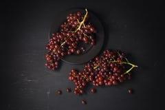 Das uvas vida roxa ainda no fundo preto Imagem de Stock Royalty Free
