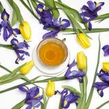 Das Veilchen Irises xiphium Knolleniris, Iris sibirica mit gelber Tulpe auf weißem Hintergrund mit Raum für Text Draufsicht, flac Lizenzfreie Stockfotografie