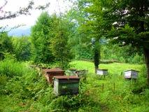 Das verlassene Bienenhaus am Gebirgssommertag Stockfotografie