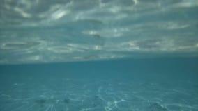 Das Video über und unter Wasser Bungalow und Unterwasserwelt stock footage