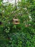 Das Vogelhaus lizenzfreie stockfotografie