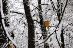 Das Vogelhaus im schneebedeckten Wald Stockbilder