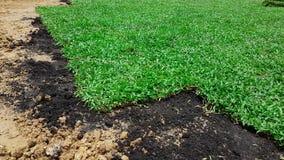 Das Vorbereiten verzieren Gras mit Düngemittel auf dem Feld Stockfotos