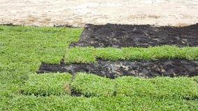 Das Vorbereiten verzieren Gras mit Düngemittel auf dem Feld Lizenzfreie Stockfotografie