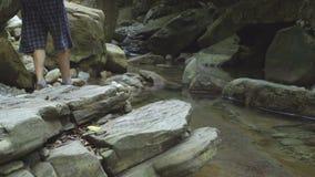 Das Wandern des Manntouristen kreuzt Gebirgsfluss mit Malamutehund im Dschungelnaturpark in den Bergen An wandern stock video