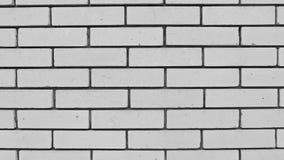 Das weiße Backsteinmauertageslicht stock video