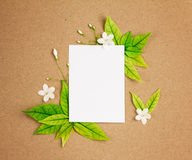 Das weiße Blatt des leeren Papiers mit neuem Frühlingsgrün-Blätter borde Stockbild