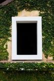 Das weiße Fenster im schwarzen Hintergrund mit Kriechpflanzenbäumen Stockfotos