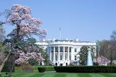 Das Weiße Haus Lizenzfreies Stockfoto