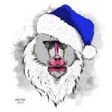 Das Weihnachtsplakat mit dem Bild des Mandrillporträts in Sankt-` s Hut Auch im corel abgehobenen Betrag Lizenzfreie Stockbilder