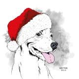 Das Weihnachtsplakat mit dem Bildhundeporträt in Sankt-` s Hut Vektorillustration des Handabgehobenen betrages Stockfotografie