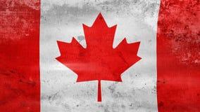 Das Wellenartig bewegen alter Kanada-Flagge, bereiten für nahtlose Schleife vor stock video