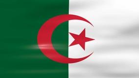 Das Wellenartig bewegen von Algerien-Flagge, bereiten für nahtlose Schleife vor stock video footage