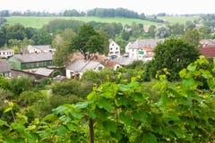 Das Welt-` s der meiste Nordweinberg in Europa Stockbild
