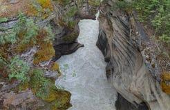 Das wirbelnde Wasser flie?t unten zum unteren Athabasca-Fluss lizenzfreie stockfotos