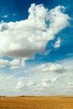 Das Wolkenfeld Lizenzfreies Stockbild