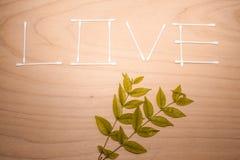 Das Wort die LIEBE, die von der Baumwollknospe auf Holz gemacht wird und das Blatt masern Hintergrund (Retro- Filter) lizenzfreie stockfotos