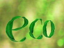 Das Wort Eco mit Grün verlässt auf einem Grün unscharfen Hintergrund 3d Lizenzfreie Stockbilder