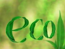 Das Wort Eco mit Grün verlässt auf einem Grün unscharfen Hintergrund 3d Stockfotos