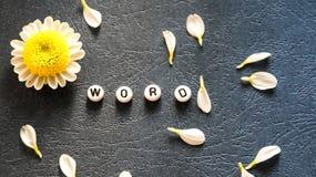 Das Wort ` Wort ` ausgebreitet von runden Blöcken, von zerstreuten Blumenblättern und von Kamille 1 Lizenzfreies Stockbild