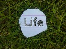 Das Wortleben geschrieben auf das Blatt Papier in das Gras lizenzfreie stockbilder