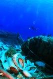Das Wrack im Roten Meer Lizenzfreies Stockfoto