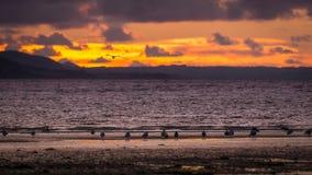Das wunderbare Wales Stockbilder