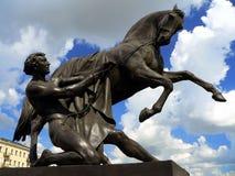 Das Zähmen der Pferde Lizenzfreies Stockbild