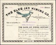 1896 das ZECHENGELLSCHAFT BLUE JAYS Aktienzertifikat - Krüppel-Nebenfluss, Colorado Lizenzfreie Stockfotografie